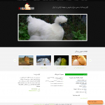 وبسایت فروش پرنده